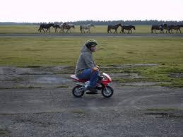 A pocket bike nem foglal sok helyet